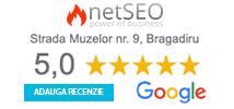 Recenzii Google netSEO